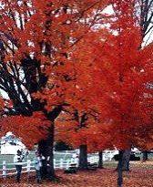 Craftsbury, Vermont, New England USA