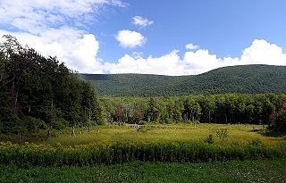 Glastenbury, Vermont, New England USA